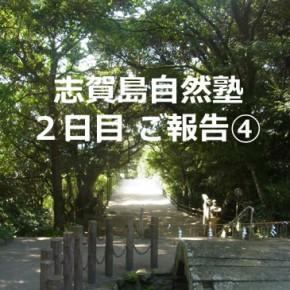志賀島親子塾ご報告④